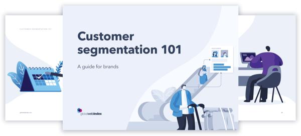 segmentation-guide-preview